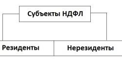 Субъекты НДФЛ