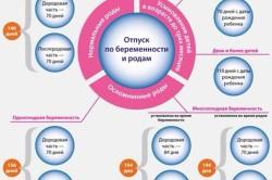 Продолжительность отпуска беременности и родам