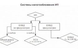 Схема системы налогообложения ИП