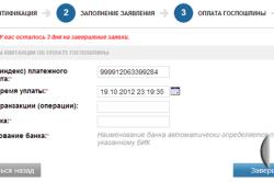 Этапы регистрации ИП через интернет