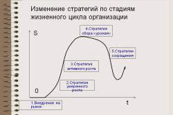 Изменение стратегий по стадиям жизненного цикла организации
