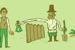 Единый сельскохозяйственный налог - ЕСХН
