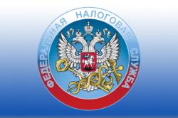 Отчетность для Федеральной налоговой службы РФ