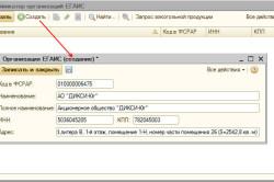 Отображение кода КПП для создания организации