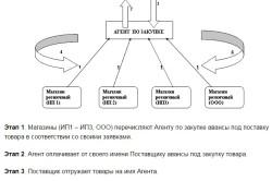 Этапы договора поставки между ИП