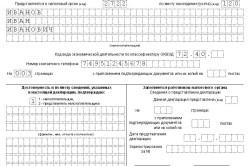 Первая страница налоговой декларации