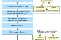 Получение субсидии от Центра занятости населения