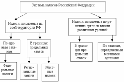 Виды налогов в РФ
