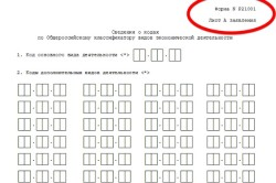 Сведения о кодах по общероссийскому класификатору видов экономической деятельности