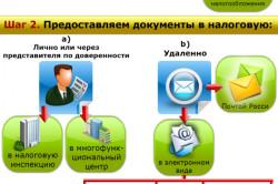 Сравнительная схема затрат при регистрации ИП и ООО