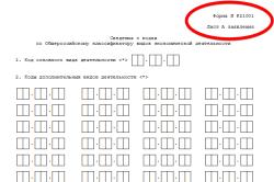 Сведения о кодах по Общероссийскому классификатору видов экономической деятельности