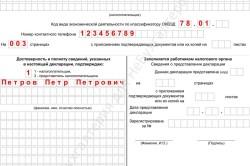 Налоговая декларация для упрощенной системы ИП