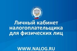Получение информации по ИНН на сайте nalog.ru