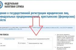 Поиск информации о фирме на портале ФНС по огрн