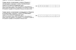 Заполнение первого раздела декларации НДС