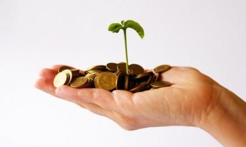 Получение субсидий для ИП