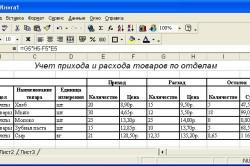 Изображение - Книга доходов и расходов obrazec-knigi-250x166