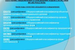 Изображение - Для чего нужен общероссийский классификатор организационно-правовой формы индивидуального предприним Rasschifrovka-abbreviatur-kodov-250x166