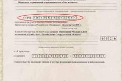 Номер свидетельства о регистрации ип это огрнип онлайн работа главным бухгалтером